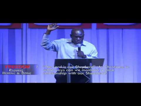 THRIVE - Freedom Requirements