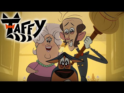 Taffy 🐱 What A Cute Rat! | Cartoons For Kids