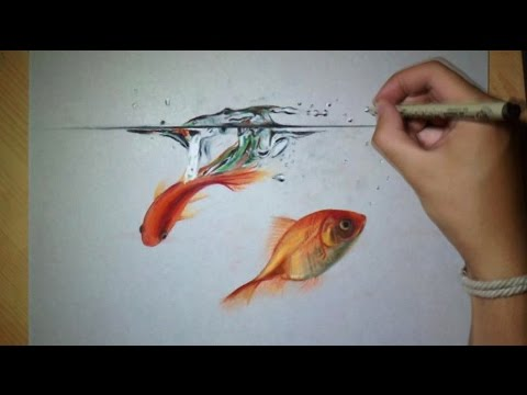 fun drawing goldfish in water
