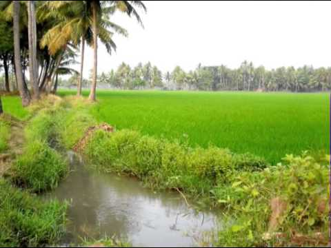 East Godavari Yatra  - A Travelog about the lush and lovely land