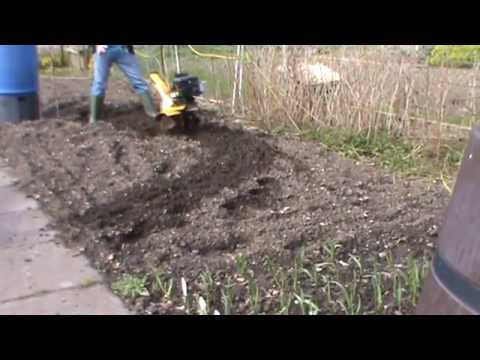 potato planting tips