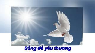 """Em như chim bồ câu trắng karaoke """" Trường Xuân"""""""