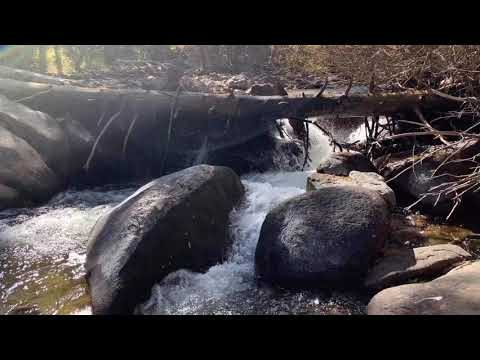 Dry Fly Fishing:  Rocky Mountain National Park - The Wild Basin: N. Fork Of The St. Vrain For Trout