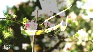 #أدعية_رمضان2015 | مالك الملك | دينا الوديدي