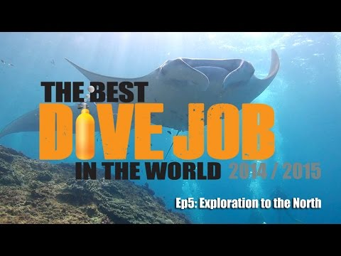 Best Dive Job in the World 2014 / 2015 EP5