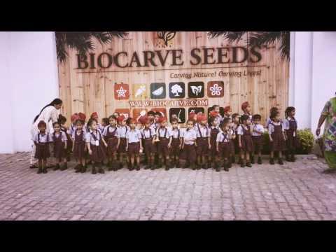 Cambridge Global School visit at Biocarve Seeds flower fields