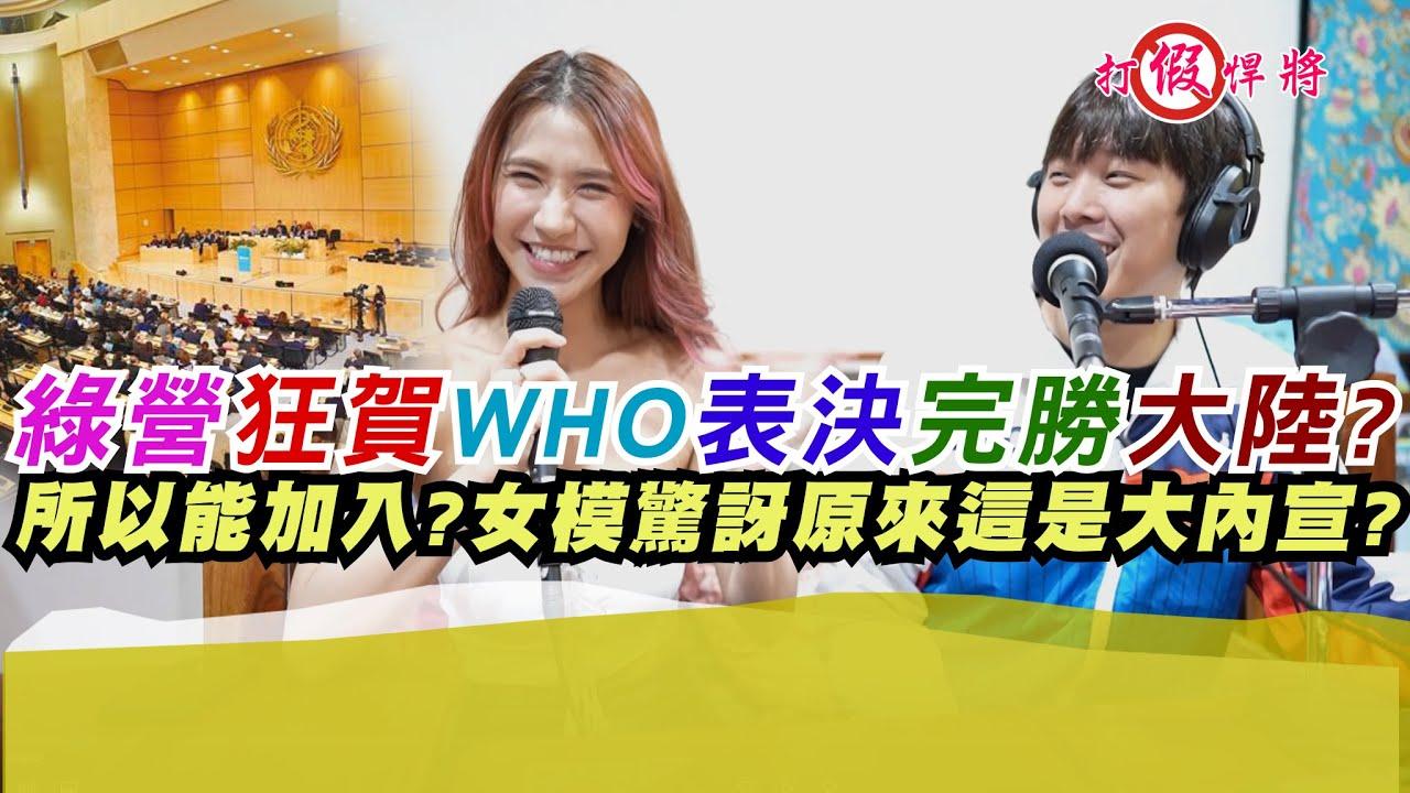 綠營狂賀WHO表決完勝大陸所以台灣能加入?女模學到原來這是大內宣? 橫綱凱咪