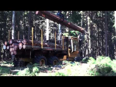 Tigercat Forwarders - Committed To Forestry