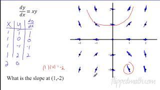 7.4 Slope Fieldsap Calculus