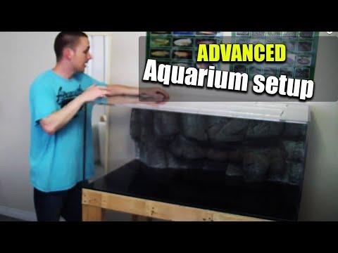 HOW TO: Set up an aquarium 1/4