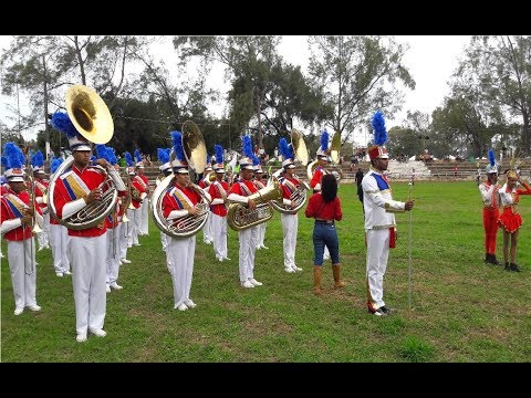 BAMUCA - I CONFAMUPI 2017 Afab- Bahia ( Banda Show )