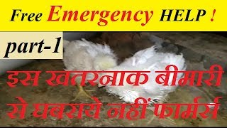 Free emergency help for poultry farmers all over india |