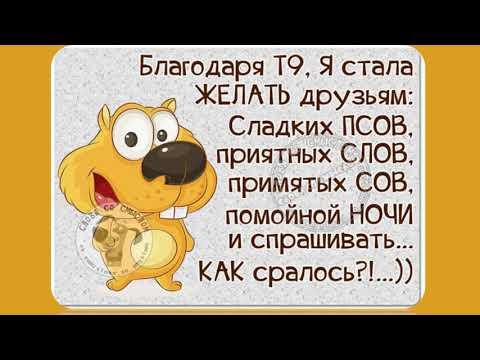Смешные цитаты с юмором)))