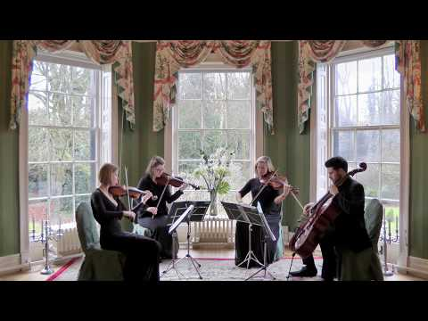 Rolling In The Deep (Adele) Wedding String Quartet