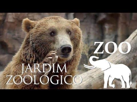 Lisbon Zoo - Bears & Birds - Portugal HD