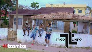 Trigo Limpo - Palavras de Amor (feat. Landrick) | Official Video