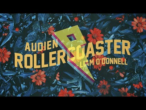 Audien - Rollercoaster ft Liam O Donnell Lyric