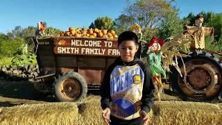 Pumpkin Patch At Smith Family Farm