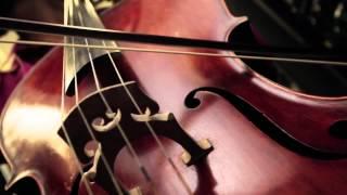 Violin Memory. Соло КРОК на рынке СХД(КРОК, эксклюзивный партнер компании Violin Memory, приглашает протестировать инновационную разработку в област..., 2013-02-28T12:45:56.000Z)