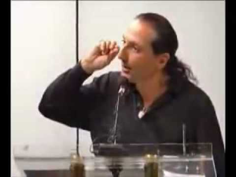 YouTube - Nassim Haramein with New Energy Movement.flv