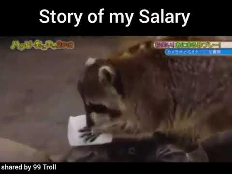 Story of my Salary Whatsapp Status