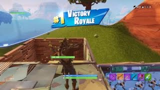 Dire Wolf Skin Fortnite battle royal victory