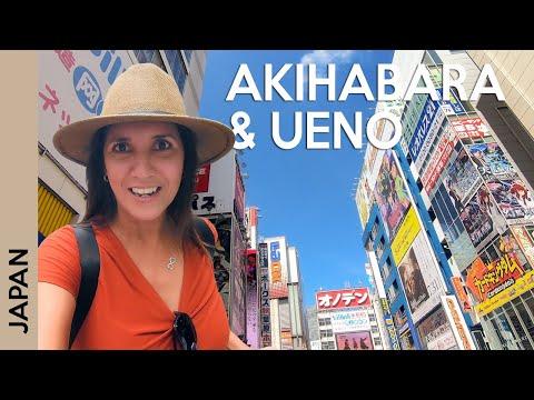 TOKYO, Japan travel guide: Akihabara, Bic Camera, Pachinko, Ueno Park | Vlog 7