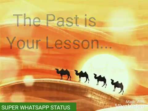 Quotes On Life Whatsapp Status Video 30 Sec Youtube