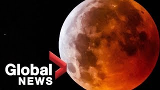 'Super Blood Wolf Moon' lunar eclipse