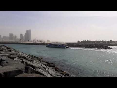 35 Minutes Ferry Dubai To Sharjah Aquarium 35 دقيقة للعبارات من دبي إلى الشارقة للأحياء المائية
