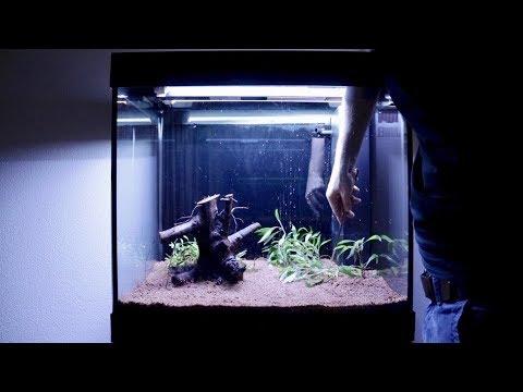 Setting up my new 55 Gallon Fish Tank Aquarium | Juwel Lido 200 LED