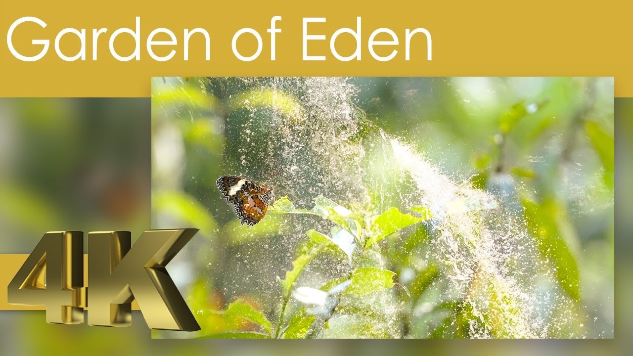 4K Garden of Eden - The Most Romantic Nature Film we ever made with Piano Music of Gabrielle Tosi