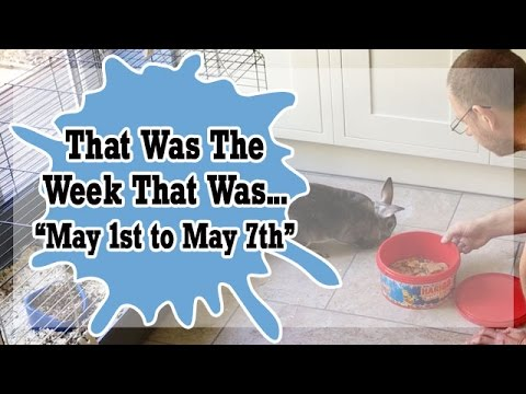 VLOG - That Was The Week That Was May 1st to May 7th  2017