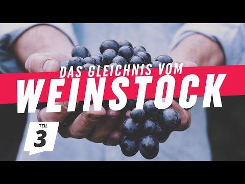 Zeit zum Ernten | Das Gleichnis vom Weinstock (3) | CZF Gottesdienst