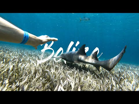 The BELIZE Project - Travel Film 4K
