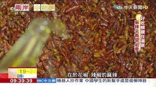 2019.02.24兩岸中國夢/正宗「重慶」麻辣鍋 好吃「湯底」揭密