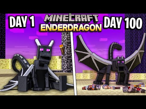 I Survived 100 Days as an ENDER DRAGON in Minecraft
