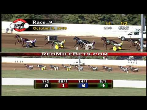 Red Mile Racetrack Race 9 10-8-2016
