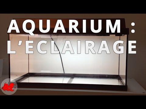 Vid o montage projecteur plat pour piscine led seamaid doovi for Eclairage piscine hors sol sans fil