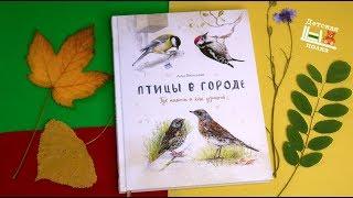 Птицы в городе. Где найти и как узнать 4+| Детская книжная полка