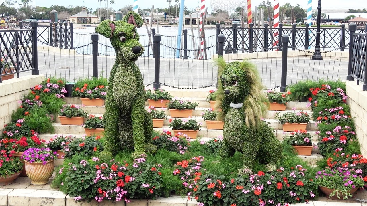 lady & tramp classic topiary new location for 2019 epcot flower & garden  festival, italy pavilion