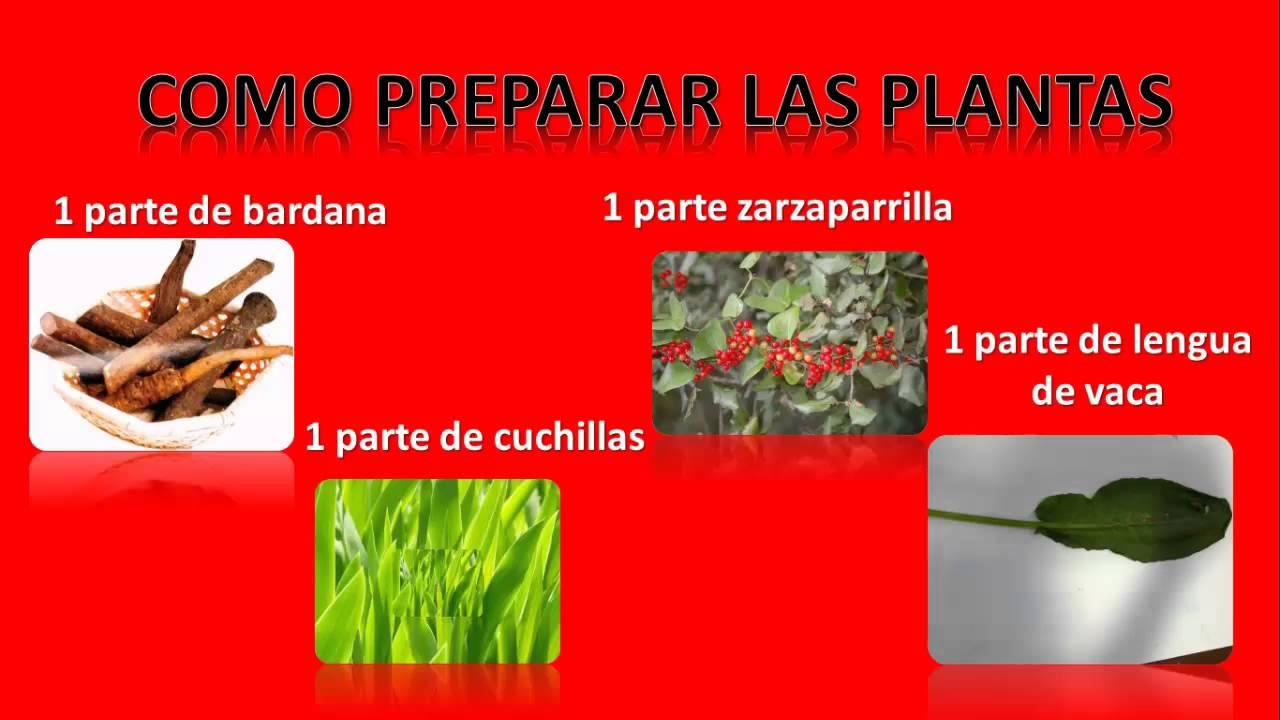 Hierbas Para Curar la Psoriasis , Remedios Caseros - YouTube