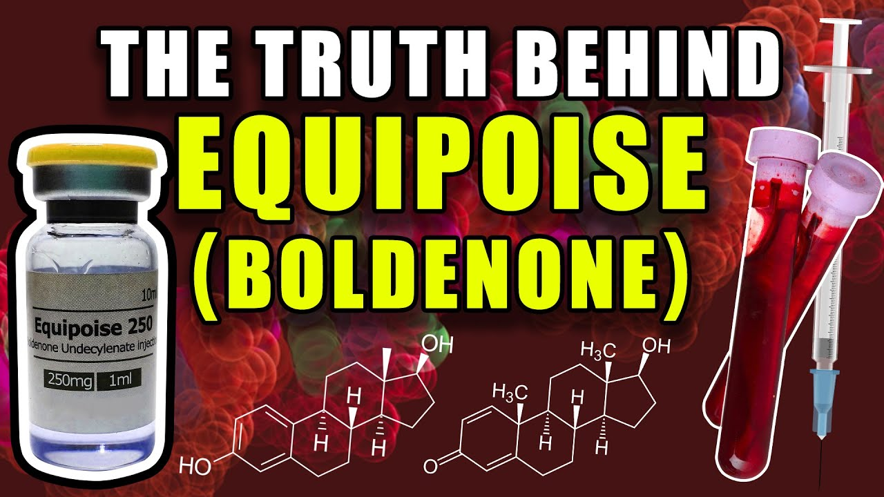 THE TRUTH BEHIND EQUIPOISE - Does Boldenone Aromatize Into Estradiol Or Act As An AI?