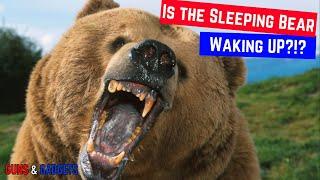Is The Sleeping Bear Waking Up?!?