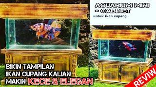 Aquarium Mini Cabinet Untuk Ikan Cupang Bikin Tampilan Makin Kece Elegan Youtube