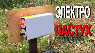 Электро-пастух и Чередование пастбищ
