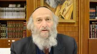 Natan Siegel on Reb Shlomo Carlebach - Jump & Dance into the Fire