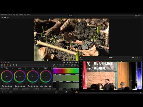 Revision 2015 - Seminar - Color Grading - Theory And Practice