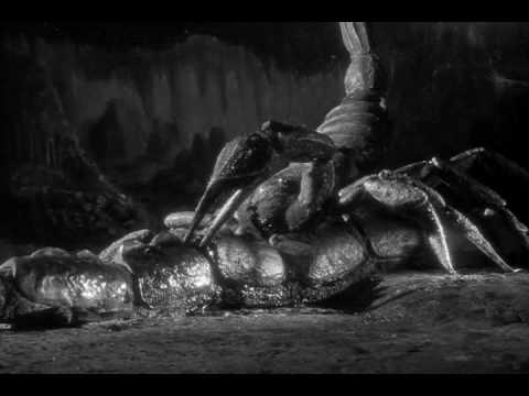 The Black Scorpion - Underground Battle