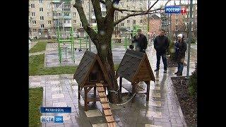 В Ростове появились первые домики для бездомных кошек